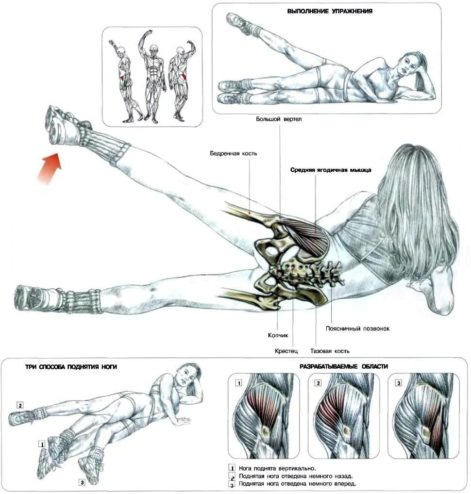 Упражнения для средней ягодичной мышцы в домашних условиях